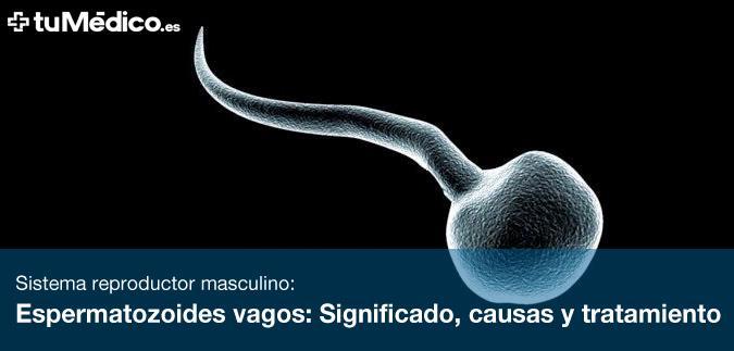 Espermatozoides vagos: Significado, causas y tratamiento